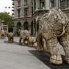 olifant temp 100x100 Olifantenproject